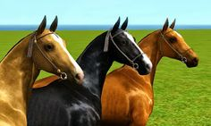 My Sims 3 Blog: Akhal-Teke Halters and Bridles & Shaved Mane by Schrodingercatproductions
