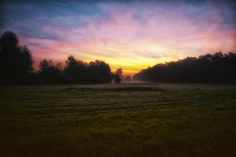 Äng en dimmig morgon,