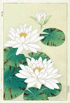 Kawarazaki Shodo (1889-1973) | White Waterlily,