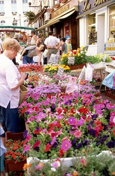 Flower market, Dijon, Bourgogne