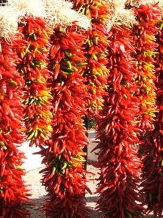 These red hot chiles were for sale in Santa Fe, N.M., at a small roadside farmer's market.