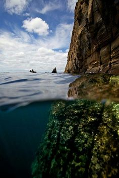 2. Snorkel in The Galapagos Islands - 50 Ultimate Travel Bucket List Ideas ... | All Women Stalk