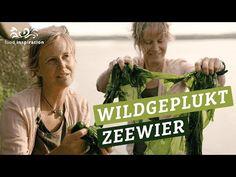Hoe Nederlands Zeewier ons menu kan verrijken - YouTube Menu, Baseball Cards, Cooking, Youtube, Movie Posters, Movies, Menu Board Design, Kitchen, Films