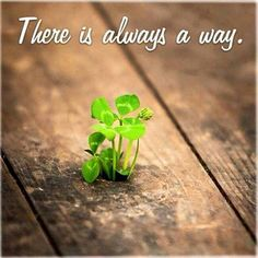 There is always a way. Find it or make it.