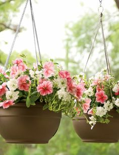 Our self-watering hanging baskets reduce watering chores and provides a steady supply of water for healthy plant growth. Choice of colors.