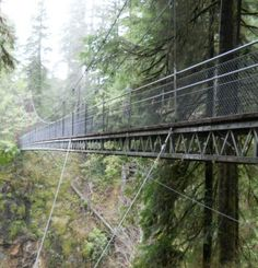 Hiking in Oregon