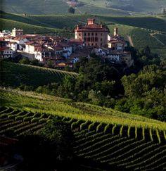 Barolo – en times tid fra Torino  Som I alle ved, er Piemonte en stor kontrast (dette har I jo læst her på siden), fra de sneklædte Alper i nord, til de grønne og flade enge i regionens sydlige del. Hovedstaden Torino, tiltrækkes af sin skønhed, naturligvis de fleste turister