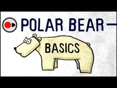 Polar Bear Basics - Everything you need to know… Are we going to lose polar bears? … and more, explained! By: Untamed Science.