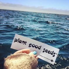 plant good seeds™ send us your address on our Facebook page and we will send you a Free sticker to post! Free Stickers, Ocean Waves, Create Yourself, Seeds, Facebook, Plants, Waves, Planters, Beach Waves