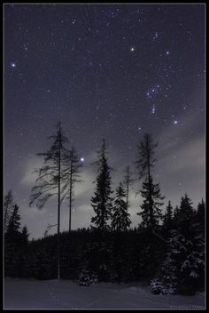 Constellation Orion, the Hunter, and Sirius, the brightest star of the night sky, shine over Fischbacher Alpen, near Alpine village of Krieglach in Austria. The three brightest stars in this view (Sirius, Rigel at Orion's foot, and Betelgeuse at Orion's shoulder) form a large prominent asterism known as the Winter Triangle.