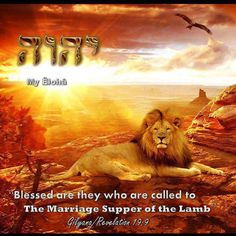 """Revelation 19:9 Then the angel said to me, """"Write this: 'Blessed are those who are invited to the lamb's wedding banquet.'"""" He also told me, """"These are the true words of God."""" 10 I bowed at his feet to worship him. But he told me, """"Don't do that! I am your coworker and a coworker of the Christians who hold on to the testimony of Yeshua. Worship God, because the testimony of Yeshua is the spirit of prophecy!"""""""