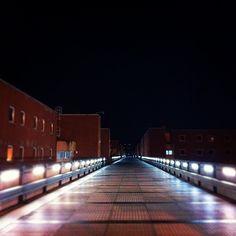Università della Calabria #2