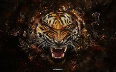 Fantasy Wallpaper Women HD Desktop | backgrounds, desktop, pozadia, revenge, tapety, tiger - 157095