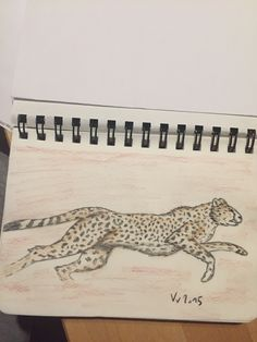 Gepard colored pencil drawing