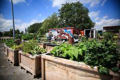 De Groningse club en festivalorganisatie bouwt aan creatieve broedplaats.