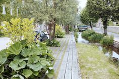 A Mantis Compos-Twin Evaluate - Improved Composting While In The City Setting Amnagement Des Berges Du Vauziron Park Landscape, Urban Landscape, Landscape Architecture, Landscape Design, Garden Design, Landscaping Company, Garden Landscaping, Parque Linear, Pocket Garden