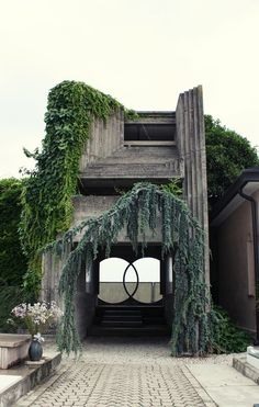 Reclaimed Ruins