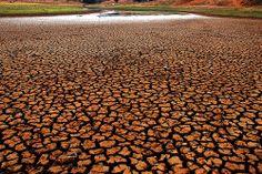 Seca Nordeste 2012