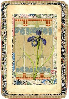 """Pattern Play Book Plate"" by ellathrasha on Polyvore"