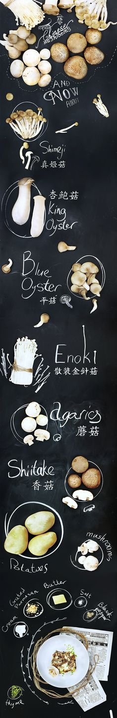 Chinese mushrooms on Behance