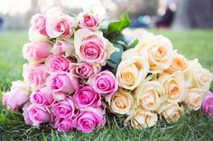 nicole-warne-paris-roses-3