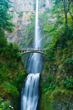 cornersoftheworld:      Multnomah Falls, OR (by fandarwin)