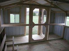 Inside a shed coop