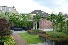 De wens van de eigenaar was: een tuin die past bij de woning met een strakke lijnvoering. Met 2 terrassen waarvan 1 overdekt en verwarmt kan er altijd buiten worden geleefd. De tuin heeft een groen karakter door de vele beplanting en het gazon. De vijgen, de olijfbomen in plantenbakken, de lounge meubels en de gebouwen geven deze tuin heel veel sfeer.