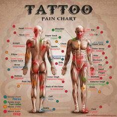 Body Modification Ezine Blog: Чарт болевых ощущений – Tattoo pain chart