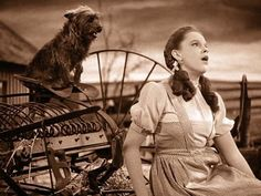 "Judy Garland and Toto in The Wizard of Oz ~ Dorothy singing: ""Somewhere Over The Rainbow""."