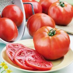 Learn more about Phoenix Tomato, a high-yielding and heat-tolerant variety with tasty, medium-sized fruit. Plants will grow 2 to 3 feet tall. Mushroom Grow Kit, Arizona Gardening, Celerie Rave, Victory Garden, Stuffed Mushrooms, Stuffed Peppers, Tomato Garden, Grow Organic, Edible Garden