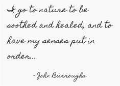 I go to nature to be soothed and healed, and to have my senses put in order...