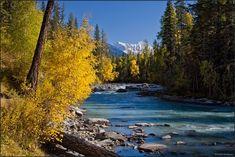By Anya Grafova - Up Kucherla Altai Mountains