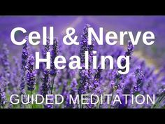 Find yourself relaxing deeply as you listen to this Guided HEALING Meditation ★ CELL and NERVE Healing (Self Healing Meditation). This healing meditation was. Healing Meditation, Guided Meditation, Meditation Youtube, Sound Healing, Self Healing, Insomnia Remedies, Essential Oils For Sleep, Lavender Oil, Aromatherapy