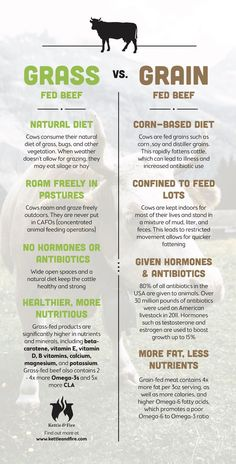 Grass Fed vs Grain Fed vs Grass-Finished Beef (and why it matters) The differences among grain-fed beef, grass-fed beef, and grass-finished beef you should know about and why it matters to your health. Raising Cattle, Raising Farm Animals, Grass Fed Meat, Organic Grass Fed Beef, Cattle Farming, Beef Farming, Beef Cattle, Food Facts, Rind