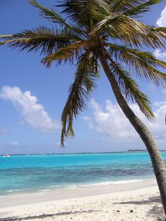 Tobago Cays by DiscoverSVG #SVGLiming