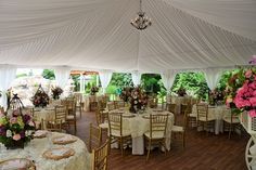 """Wedding Photos   Fairy Tale Tents & Events - 40'x40' High-Peak Fairy Tale Frame Tent with white full gathered tent liner, 15 light chandelier, white side pole swags with white ties, and full tent flooring; 60"""" round tables with ivory polyester table linens, ivory annoinette overylays, ivory polyester napkins, gold charger plates and gold chiavari chairs and ivory chair pads"""