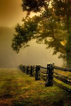 Imagine the atmosphere: Foggy pasture on the Blue Ridge Parkway somewhere in North Carolina or Virginia Beautiful World, Beautiful Images, Simply Beautiful, Landscape Photography, Nature Photography, Photography Magazine, Country Life, Country Living, Country Roads