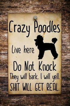 Poodle sign
