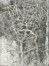 Victoria Crowe at the Scottish Gallery, Edinburgh Graphite Drawings, Charcoal Drawings, Drawing Course, Drawing Projects, National Portrait Gallery, Photo Tree, Tree Art, Natural World, Painting & Drawing