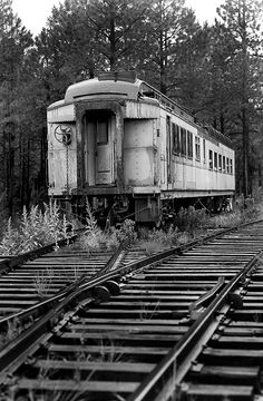 ~❀❀❀~Abandoned Train~❀❀❀~