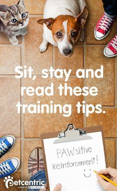 Petcentric.com has fun and easy tips that can help your entire family get started when training your dog or cat. Remember to decide together on what simple commands you'll use and how you're going to reward your pet's progress. Once everyone is on the same page with how to train your dog or cat, get to work! The final tip for this lifelong process is practice, practice, practice.