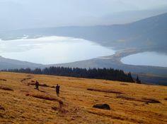 <3 Mt Albert Colorado