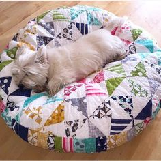 You.guys. I can't even...seriously. How insanely adorable is this puppy bed AND the puppy?!! used @allpeoplequilt tutorial on their site and she used #colortheoryfabric for the pinwheel