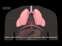 Guérir de tous les maladies ! le jeûne première et unique médecine - www.regenere.org - YouTube