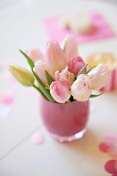 Pink tulips in Glassybaby Orquideas Cymbidium, Dutch Tulip, Beautiful Flowers Wallpapers, Pink Tulips, Flower Wallpaper, Pretty Flowers, Spring Flowers, Spring Blooms, Flowers Garden