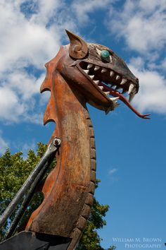 viking dragon head ship