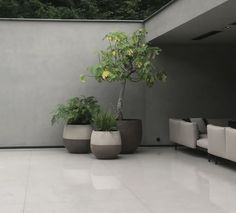 Potted Plants, Sweet Home, New Homes, Exterior, Pots, Terrace, Cement Render, Pot Plants, House Beautiful