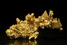 Gold Crystals by usageology on Flickr. Locality: Eagle's Nest Mine, Placer County, California, US Size: Specimen is 1.1 inches long.