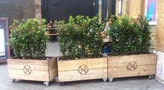 Wooden planters from scaffolding boards on castors, Oslo, London E8